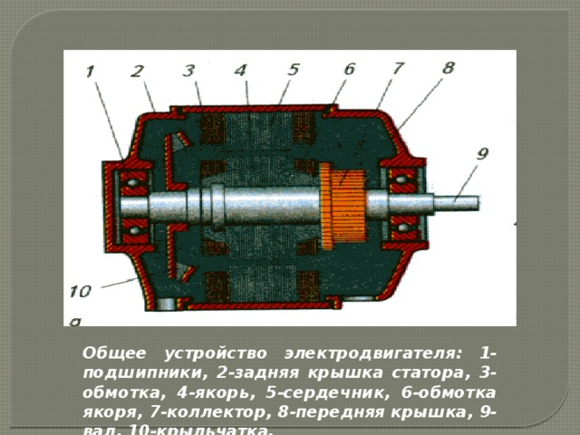 Общее устройство электродвигателя: 1-подшипники, 2-задняя крышка статора, 3-обмотка, 4-якорь, 5-сердечник, 6-обмотка якоря, 7-коллектор, 8-передняя крышка, 9-вал, 10-крыльчатка.