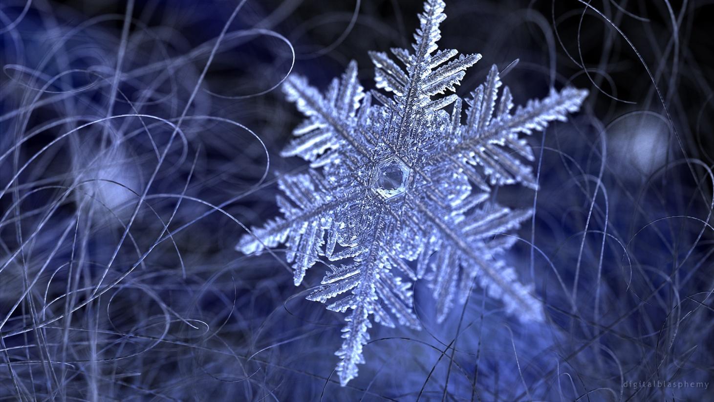 Макрофотографии снежинок обои