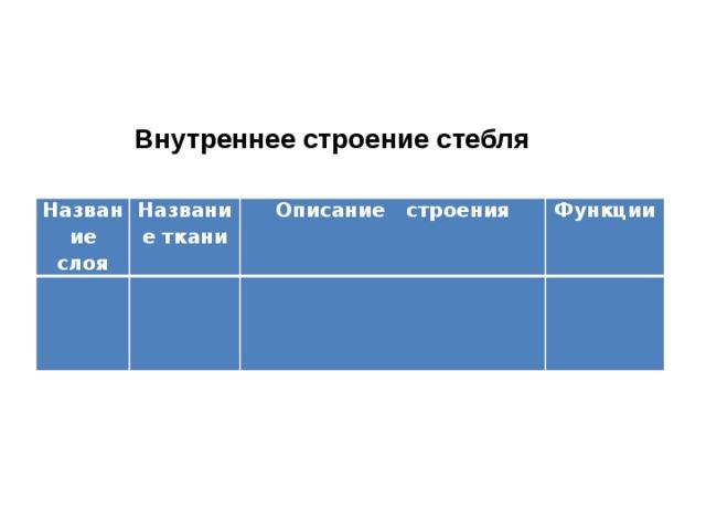 Внутреннее строение стебля Название слоя Название ткани  Описание строения Функции