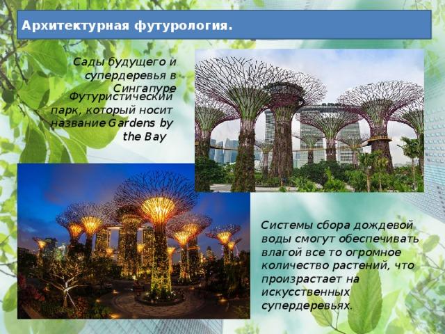 Архитектурная футурология. Сады будущего и супердеревья в Сингапуре Футуристический парк, который носит название Gardens by the Bay Системы сбора дождевой воды смогут обеспечивать влагой все то огромное количество растений, что произрастает на искусственных супердеревьях.