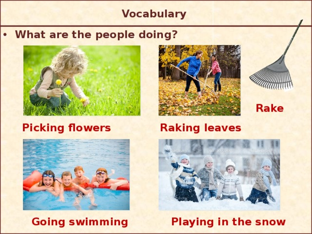Vocabulary  What are the people doing? Rake Picking flowers Raking leaves Playing in the snow Going swimming