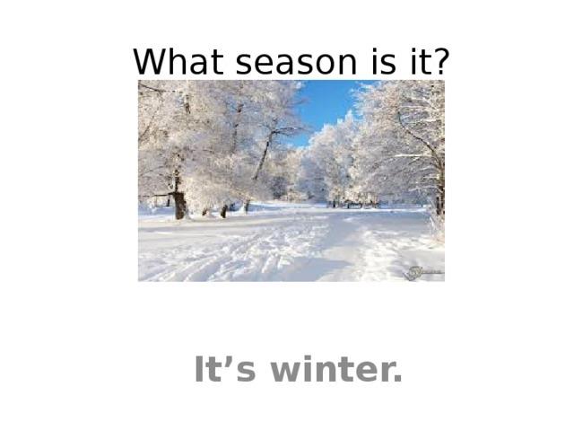 What season is it? It's winter.