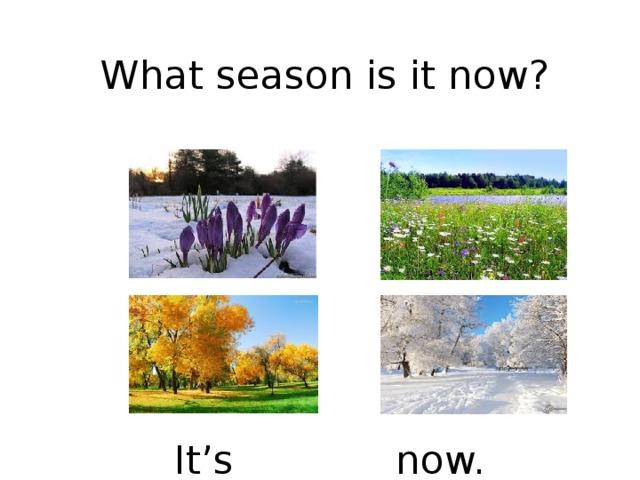What season is it now? It's _______ now.