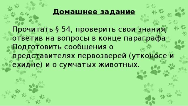 Домашнее задание Прочитать § 54, проверить свои знания, ответив на вопросы в конце параграфа Подготовить сообщения о представителях первозверей (утконосе и ехидне) и о сумчатых животных.