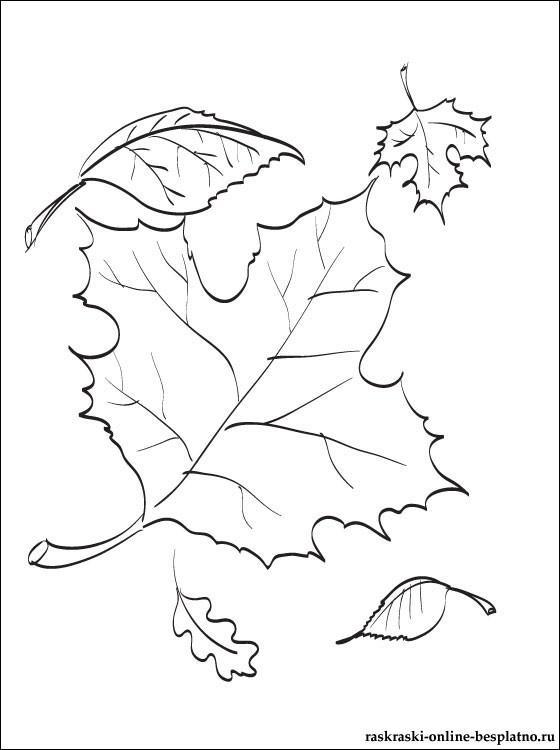Осенняя открытка рисунок карандашом