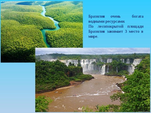бразилия занимает место в мире