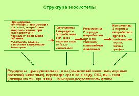 Решение задач балансовое равенство в экосистеме задачи на комбинаторику с решением дискретная математика