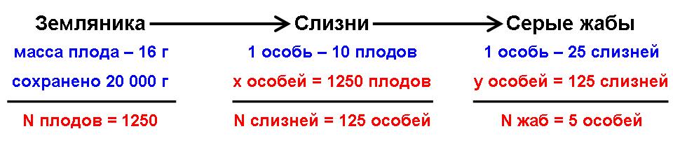 Решение задач балансовое равенство в экосистеме задачи на ромб 9 класс с решением