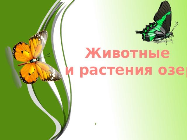Животные и растения озер г