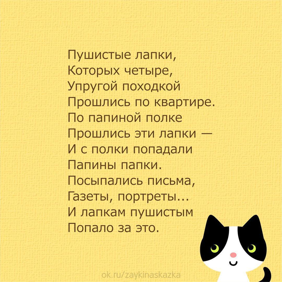 картинки кошки стихами парусам этих фото являются