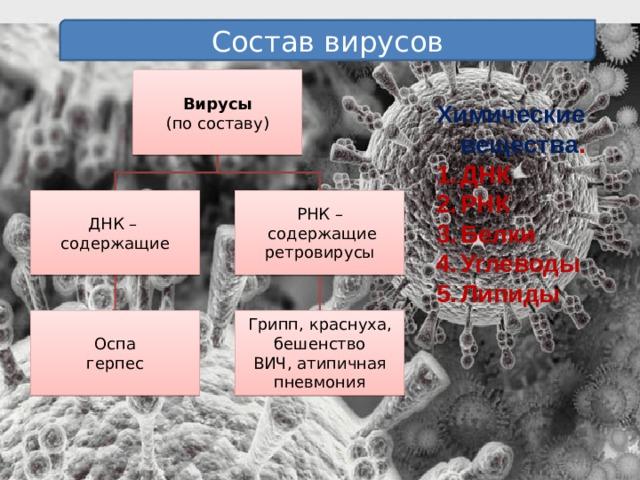 Состав вирусов Вирусы (по составу) Химические вещества . ДНК РНК Белки Углеводы Липиды ДНК – РНК – содержащие  содержащие ретровирусы Грипп, краснуха, бешенство Оспа ВИЧ, атипичная пневмония герпес