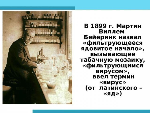 В 1899 г. Мартин Виллем Бейеринк н азвал «фильтрующееся ядовитое начало», вызывающее табачную мозаику, «фильтрующимся вирусом»,  ввел термин «вирус»  (от латинского – «яд»)