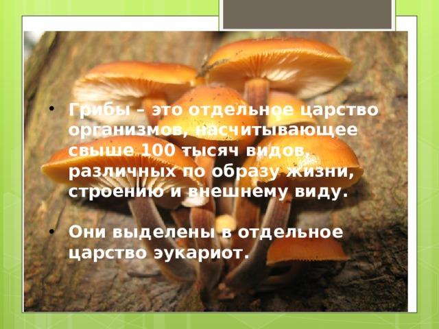 Грибы – это отдельное царство организмов, насчитывающее свыше 100 тысяч видов, различных по образу жизни, строению и внешнему виду.  Они выделены в отдельное царство эукариот.