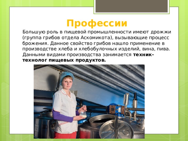 Профессии Большую роль в пищевой промышленности имеют дрожжи (группа грибов отдела Аскомикота), вызывающие процесс брожения. Данное свойство грибов нашло применение в производстве хлеба и хлебобулочных изделий, вина, пива. Данными видами производства занимается техник-технолог пищевых продуктов.