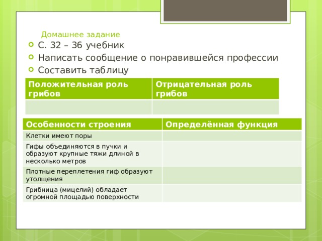 Домашнее задание С. 32 – 36 учебник Написать сообщение о понравившейся профессии Составить таблицу Заполнить таблицу Положительная роль грибов Отрицательная роль грибов Особенности строения Клетки имеют поры Определённая функция Гифы объединяются в пучки и образуют крупные тяжи длиной в несколько метров Плотные переплетения гиф образуют утолщения Грибница (мицелий) обладает огромной площадью поверхности
