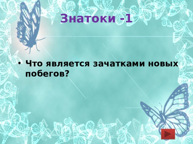 Знатоки -1 Что является зачатками новых побегов?