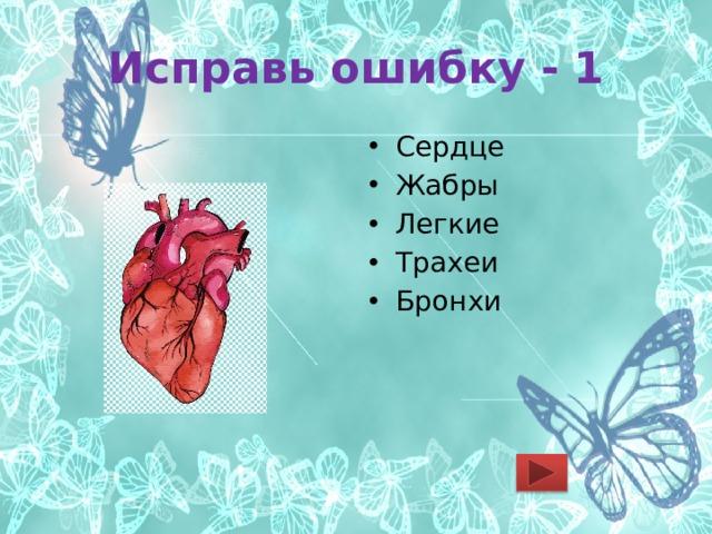 Исправь ошибку - 1 Сердце Жабры Легкие Трахеи Бронхи
