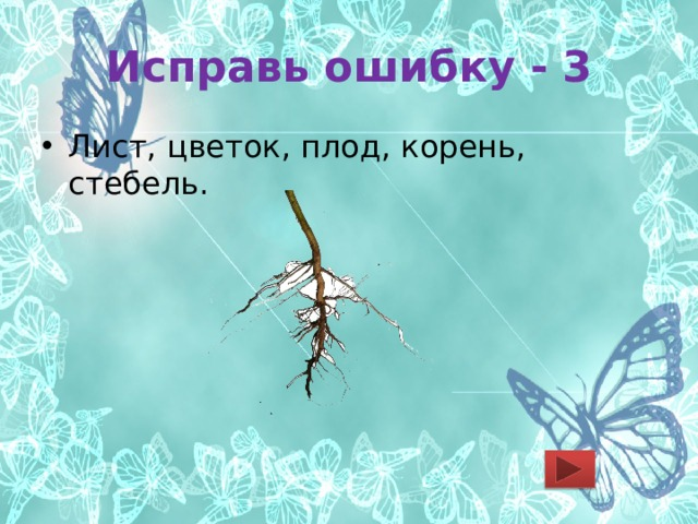 Исправь ошибку - 3 Лист, цветок, плод, корень, стебель.