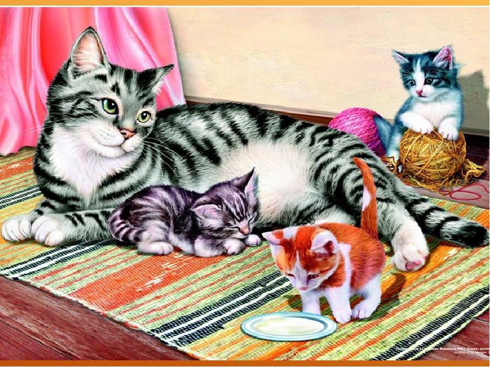 составляем рассказ по картинкам кошки теперь