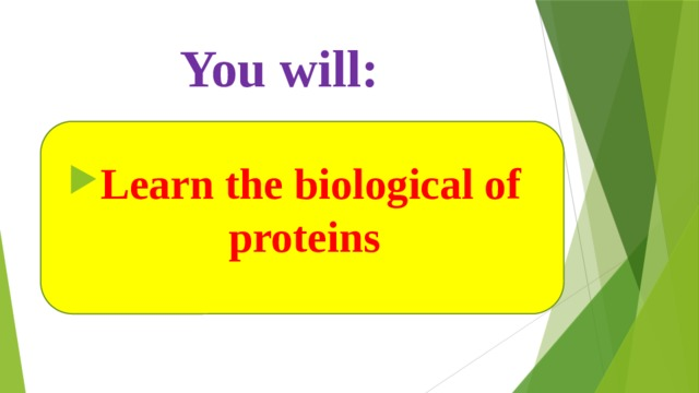You will: Learn the biological of proteins