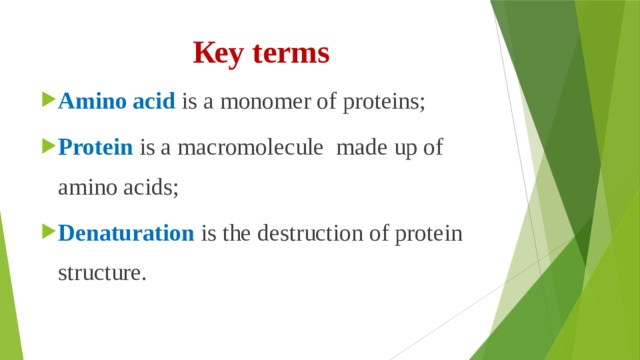 Кеу terms Amino acid is a monomer of proteins; Protein is a macromolecule made up of amino acids; Denaturation is the destruction of protein structure.