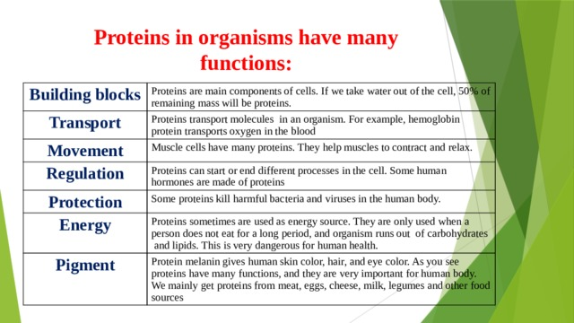 Proteins in organisms have many functions: Building blocks Proteins are main components of cells. If we take water out of the cell, 50% of remaining mass will be proteins. Transport Proteins transport molecules in an organism. For example, hemoglobin protein transports oxygen in the blood Movement Muscle cells have many proteins. They help muscles to contract and relax. Regulation Proteins can start or end different processes in the cell. Some human hormones are made of proteins Protection Some proteins kill harmful bacteria and viruses in the human body. Energy Proteins sometimes are used as energy source. They are only used when a person does not eat for a long period, and organism runs out of carbohydrates and lipids. This is very dangerous for human health. Pigment Protein melanin gives human skin color, hair, and eye color. As you see proteins have many functions, and they are very important for human body. We mainly get proteins from meat, eggs, cheese, milk, legumes and other food sources