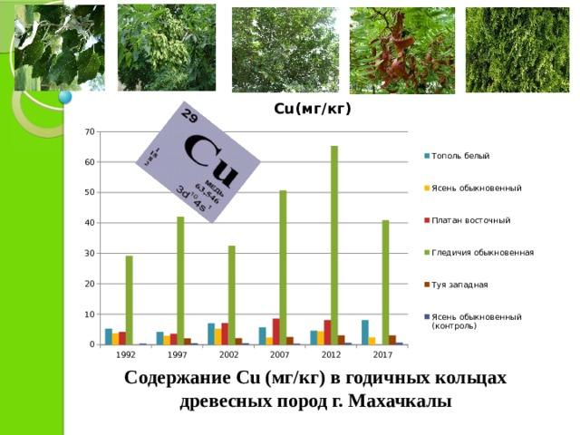 Содержание Cu (мг/кг) в годичных кольцах древесных пород г. Махачкалы