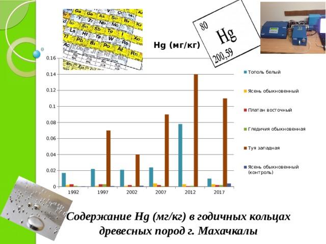 Содержание Hg (мг/кг) в годичных кольцах древесных пород г. Махачкалы