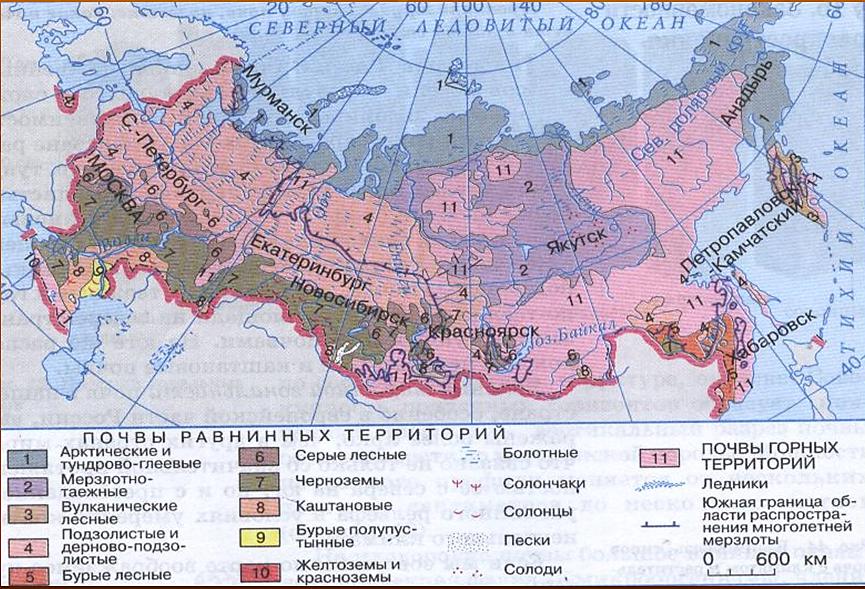регионов россии занимают леса как оплатить кредит беларусбанка через интернет банкинг белагропромбанка