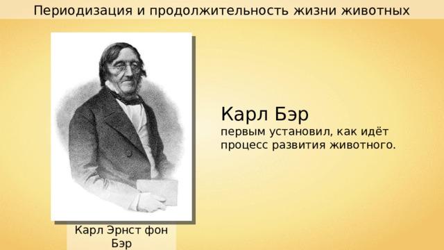 Периодизация и продолжительность жизни животных Карл Бэр первым установил, как идёт процесс развития животного. Карл Эрнст фон Бэр