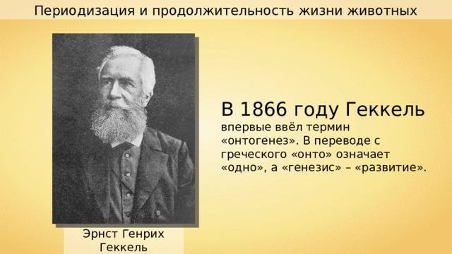 Периодизация и продолжительность жизни животных В 1866 году Геккель впервые ввёл термин «онтогенез». В переводе с греческого «онто» означает «одно», а «генезис» – «развитие». Эрнст Генрих Геккель