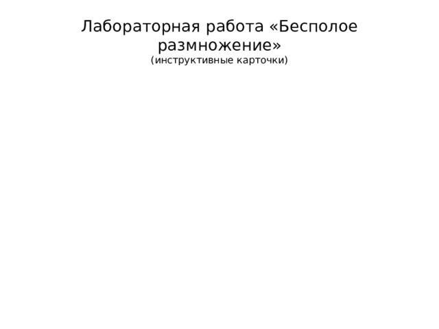 Лабораторная работа «Бесполое размножение»  (инструктивные карточки)