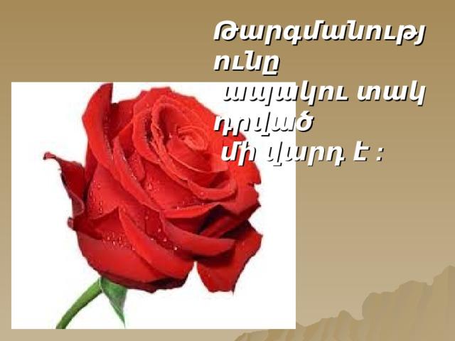 Թարգմանությունը  ապակու տակ դրված  մի վարդ է :