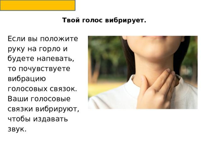 Твой голос вибрирует.   Если вы положите руку на горло и будете напевать, то почувствуете вибрацию голосовых связок. Ваши голосовые связки вибрируют, чтобы издавать звук.