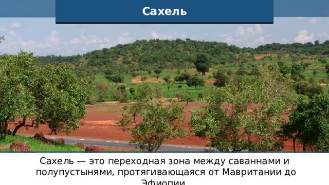 Сахель Сахель — это переходная зона между саваннами и полупустынями, протягивающаяся от Мавритании до Эфиопии.