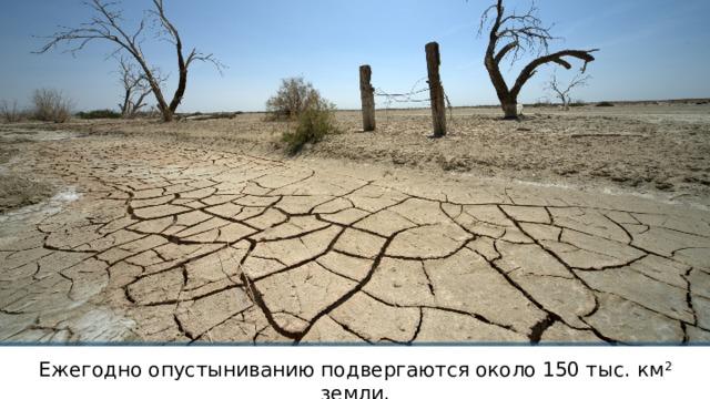 Ежегодно опустыниванию подвергаются около 150 тыс. км 2 земли.