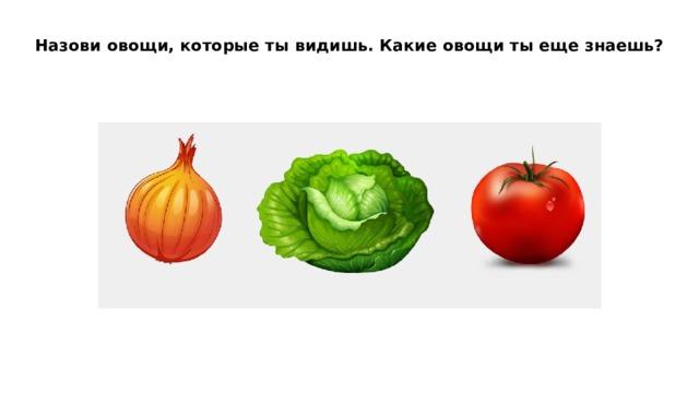 Назови овощи, которые ты видишь. Какие овощи ты еще знаешь?