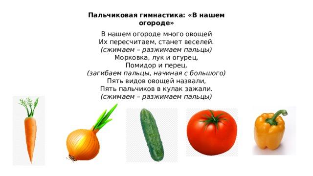 Пальчиковая гимнастика: «В нашем огороде» В нашем огороде много овощей Их пересчитаем, станет веселей. (сжимаем – разжимаем пальцы) Морковка, лук и огурец, Помидор и перец. (загибаем пальцы, начиная с большого) Пять видов овощей назвали, Пять пальчиков в кулак зажали. (сжимаем – разжимаем пальцы)