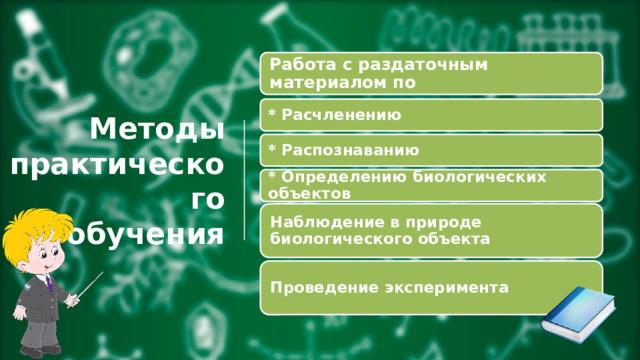 Работа с раздаточным материалом по * Расчленению Методы  практического  обучения * Распознаванию * Определению биологических объектов Наблюдение в природе биологическогообъекта Проведение эксперимента