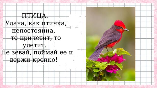 ПТИЦА. Удача, как птичка, непостоянна, то прилетит, то улетит.  Не зевай, поймай ее и держи крепко!
