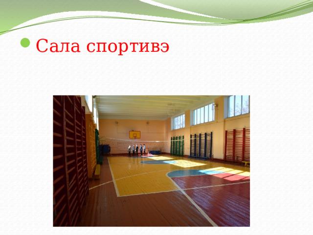 Сала спортивэ