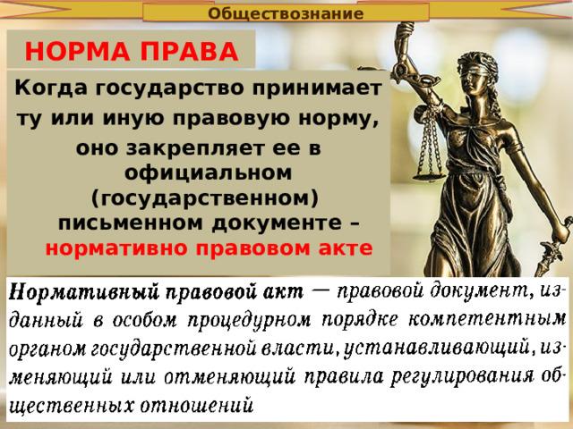 Обществознание НОРМА ПРАВА Когда государство принимает ту или иную правовую норму, оно закрепляет ее в официальном (государственном) письменном документе – нормативно правовом акте
