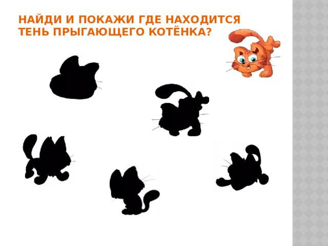НАЙДИ и покажи ГДЕ НАХОДИТСЯ  тень прыгающего котёнка?