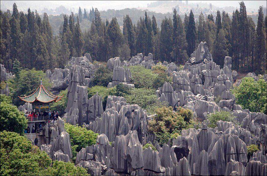 целом, как каменный лес фото китай что